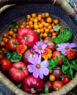 Garden Basket1