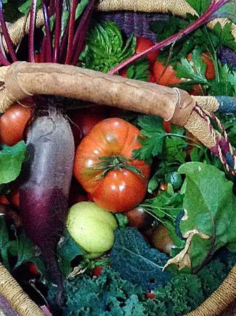 Garden Basket2.2
