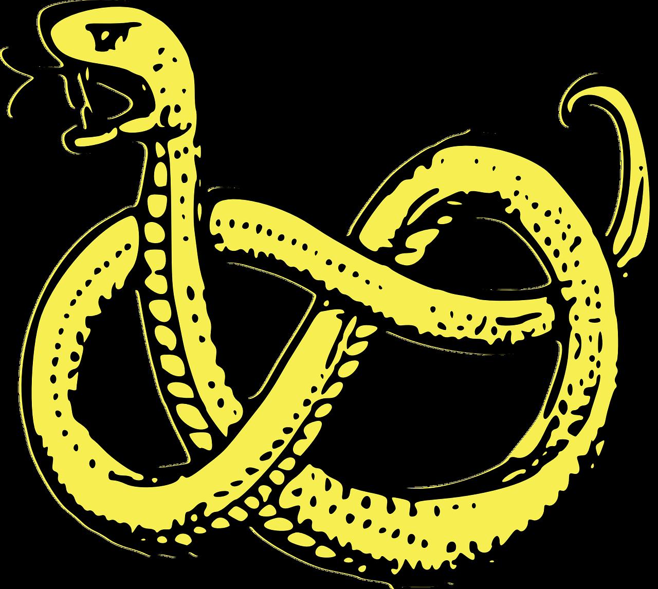 snake-309447_1280