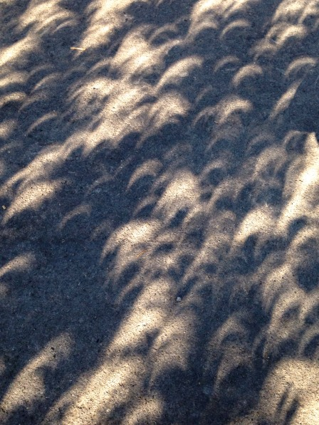 Eclipse Shadow3