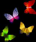 butterflies-1948441