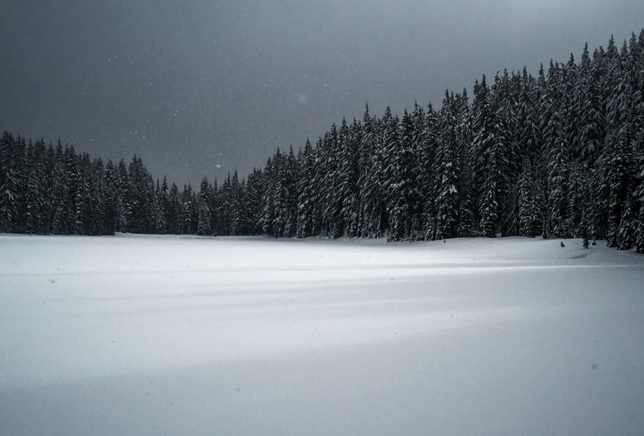 Todd lake 1