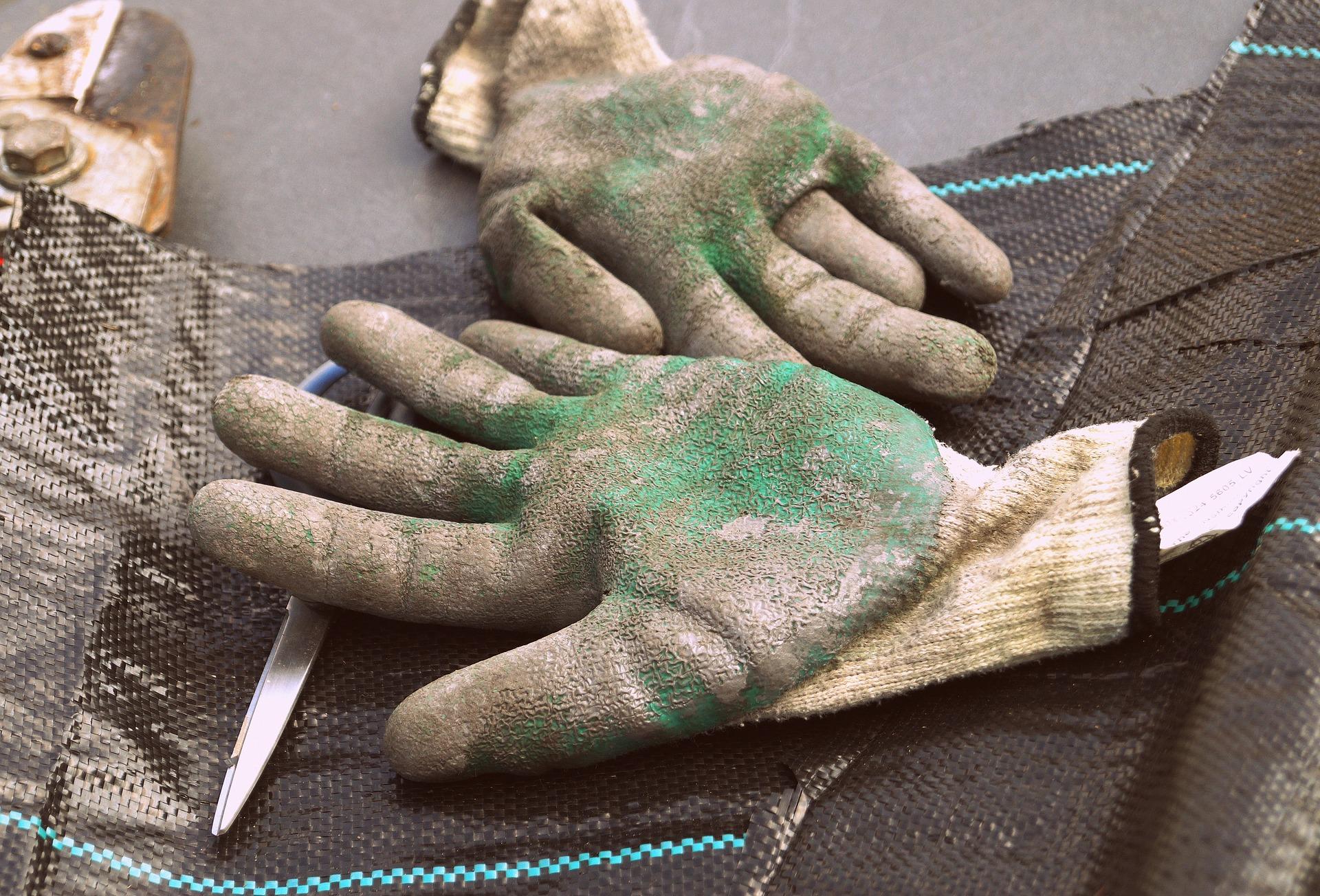 gloves-1252355_1920