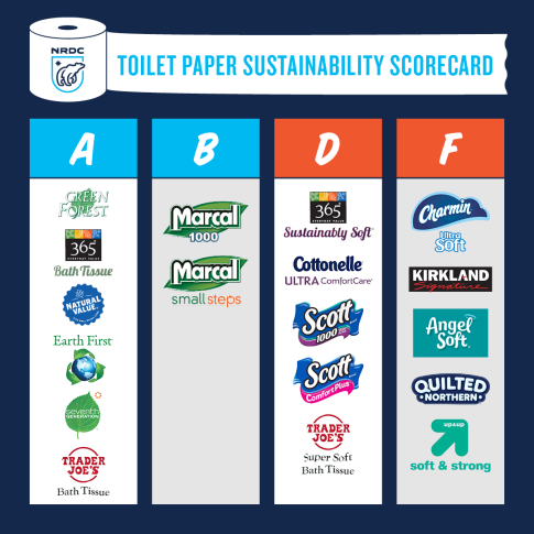 boreal_toiletpaperscorecard_1080x1080_0