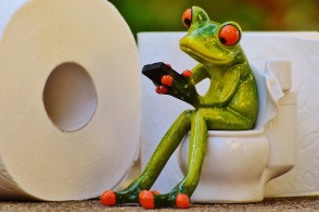 frog-1037251_1280